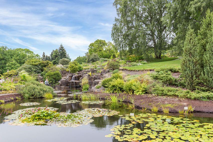 Sinsenveien 9 Kort vei til bl.a. Tøyenparken og Botanisk Hage blomstrer flott på vår- og sommerstid!