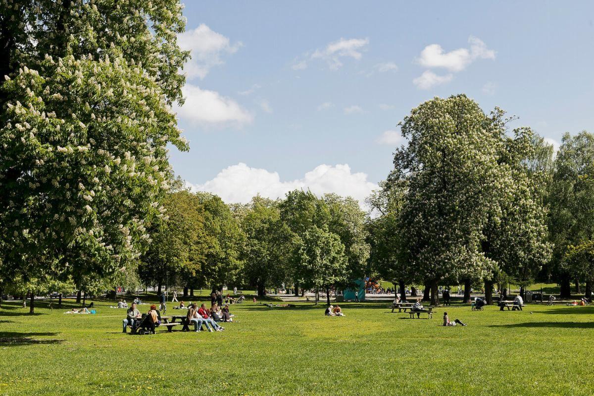 Malmøgata 2 - Rusler du nedover gaten kommer du til Sofienbergparken -