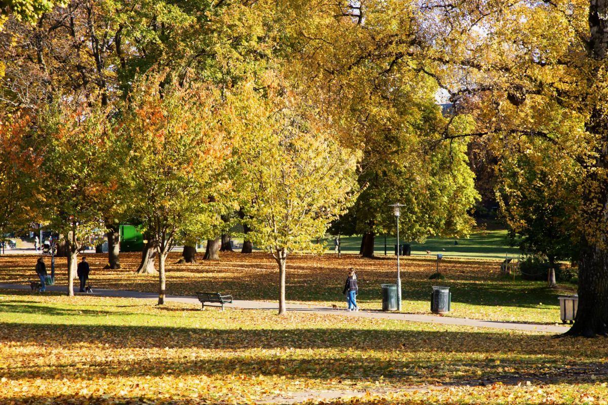Københavngata 14B Flere populære parker og grøntområder i nærheten