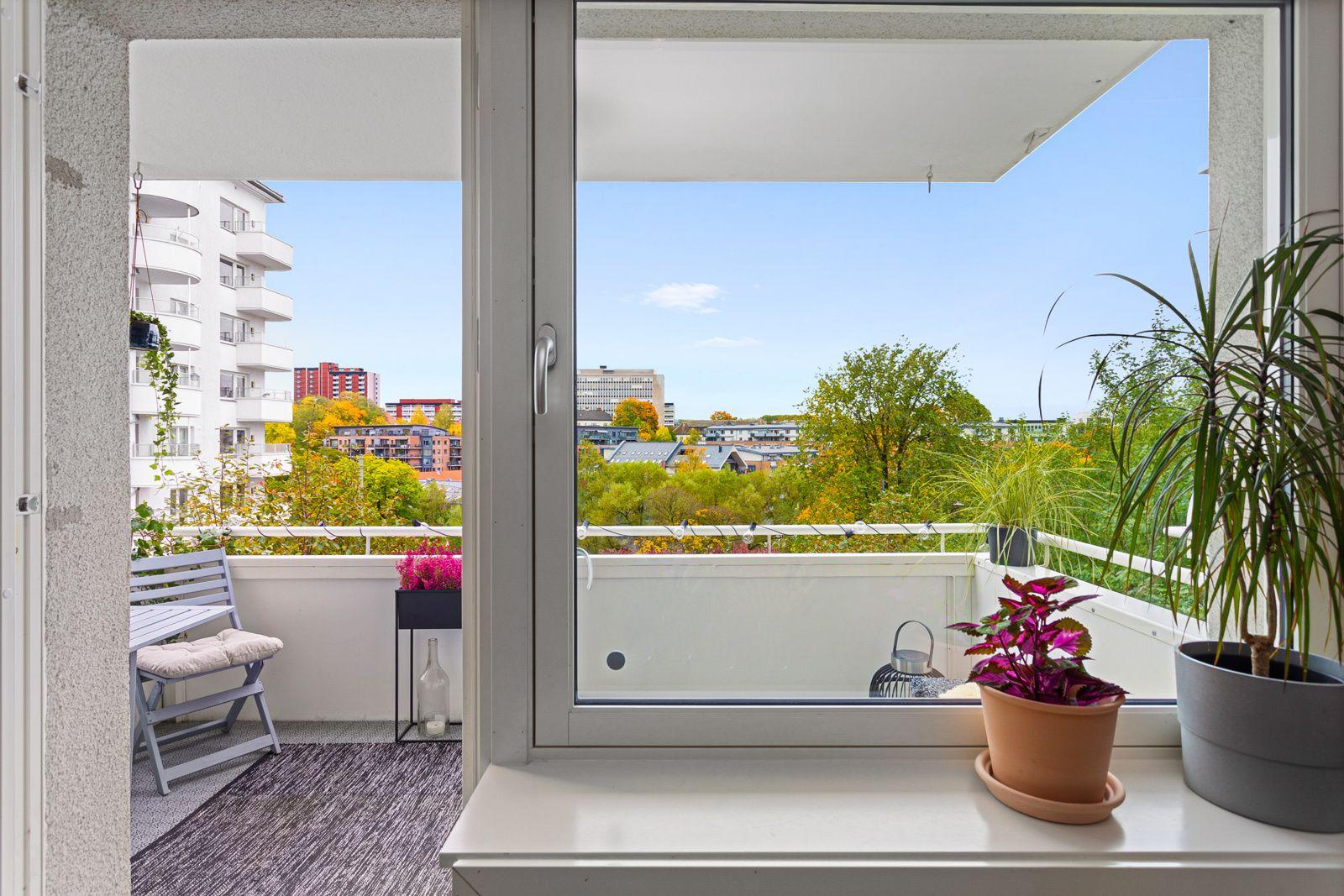 Ålesundgata 3 B Alle vinduene i leiligheten var nye i 2011, og det er brede vinduskarmer for planter og dekor.